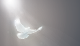 How Listening to the Holy Spirit Helps You Navigate Life's Obstacles